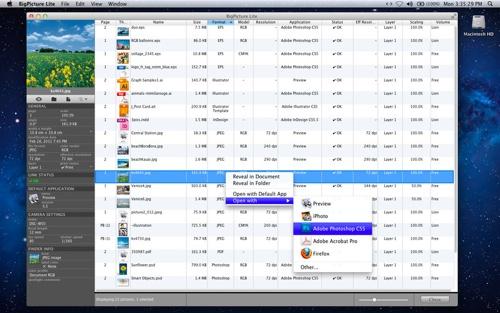 Badia releases free BigPicture Lite for InDesign CS5/5.5