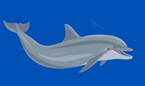 Sea Animals swims onto Mac OS X