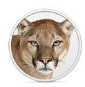 ThreatMetrix looks at Mountain Lion security
